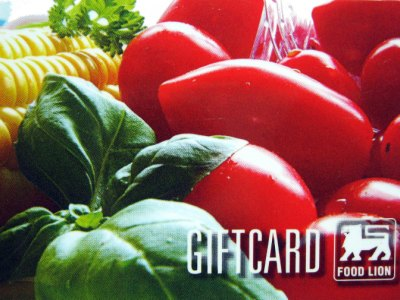 www.talktofoodlion.com, Take Food Lion Survey Sweepstakes to Win $250 Gift Card